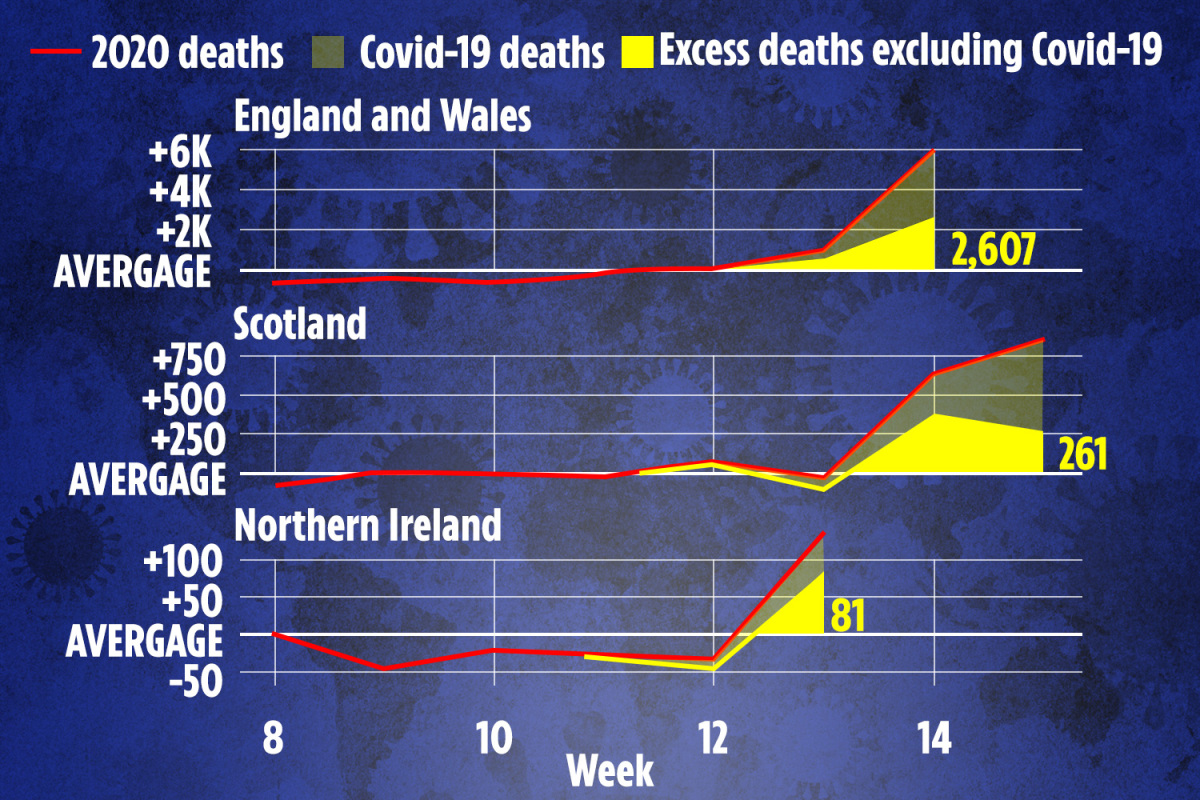Charts show real UK coronavirus death toll could be much higher than first feared