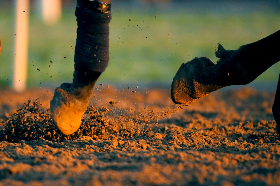 US racing tips: Templegate's best bets for the meeting at Fonner Park on Sky Sports Racing on Tuesday