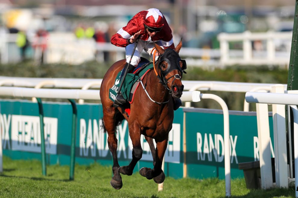 Virtual Grand National Runners: Tiger Roll made the 5-1 favourite as bookies come together to raise money for charity