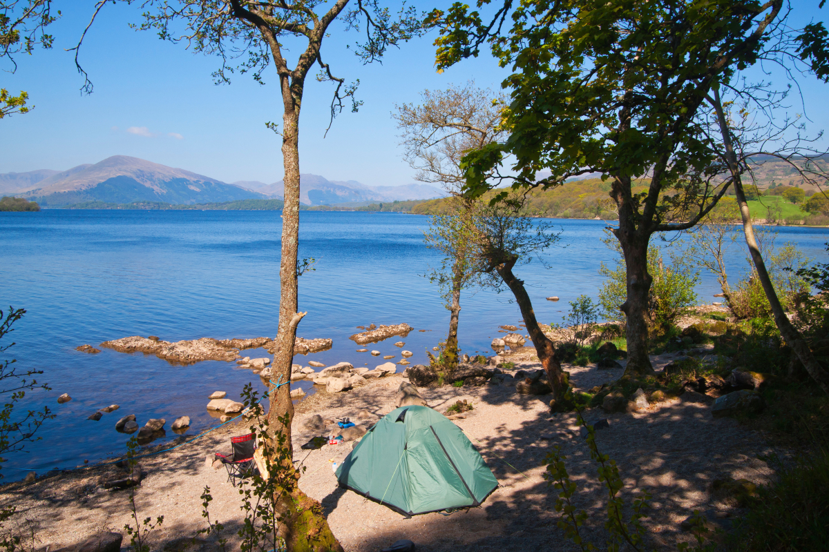 UK campsite bookings up 60% during summer season as Brits opt for domestic holidays this year