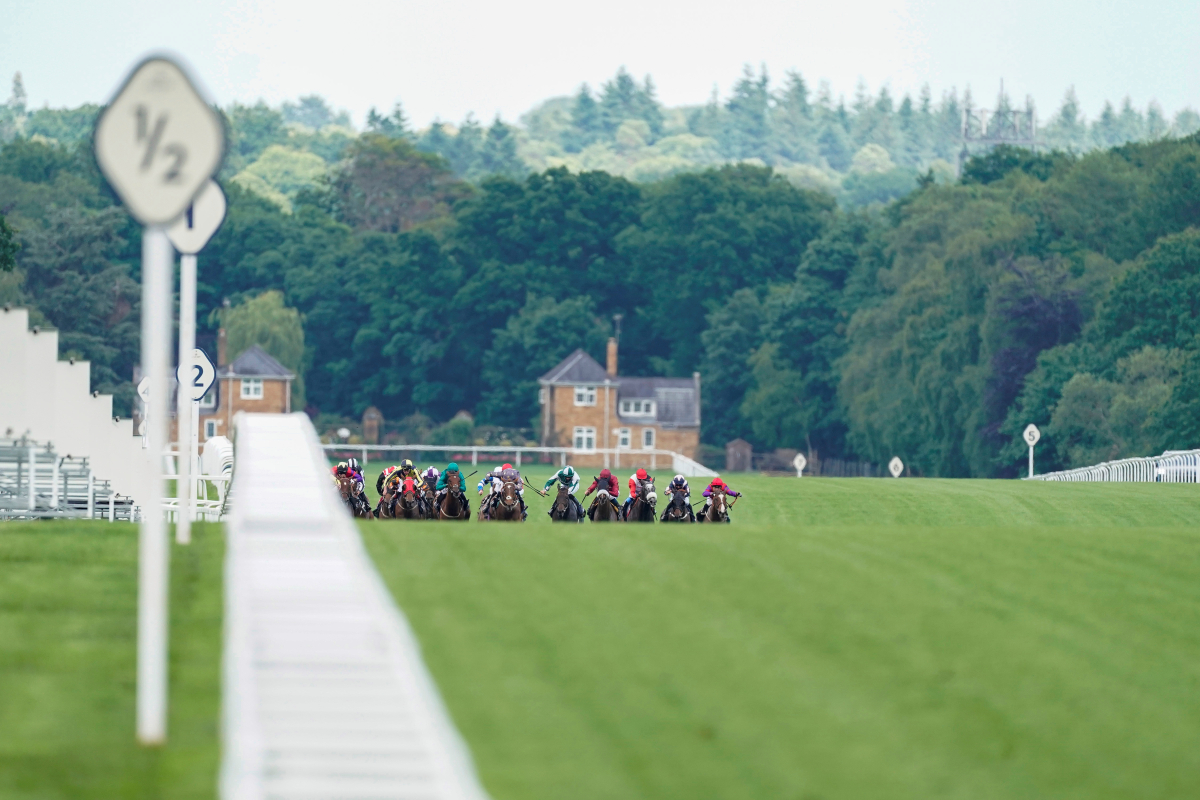 1.50 Royal Ascot racecard and tips: Who should I bet on in the Coventry Stakes?