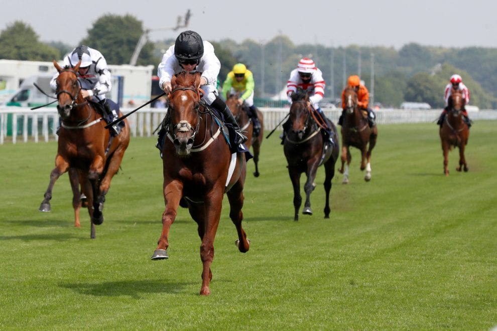 Doncaster Tips: Racecard, analysis and betting preview for the feature race on Tuesday