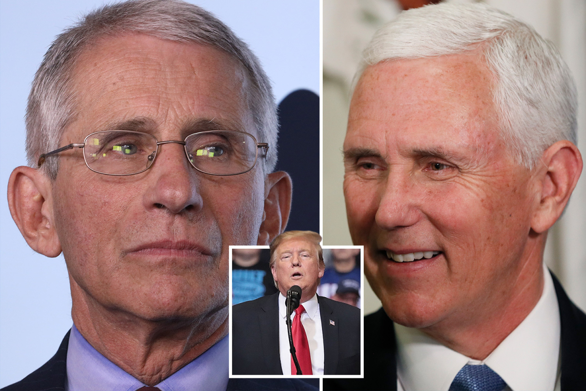 Dr Fauci says 'of course' he wouldn't go to Trump rally but Pence assures fears of 2nd coronavirus wave are 'overblown'