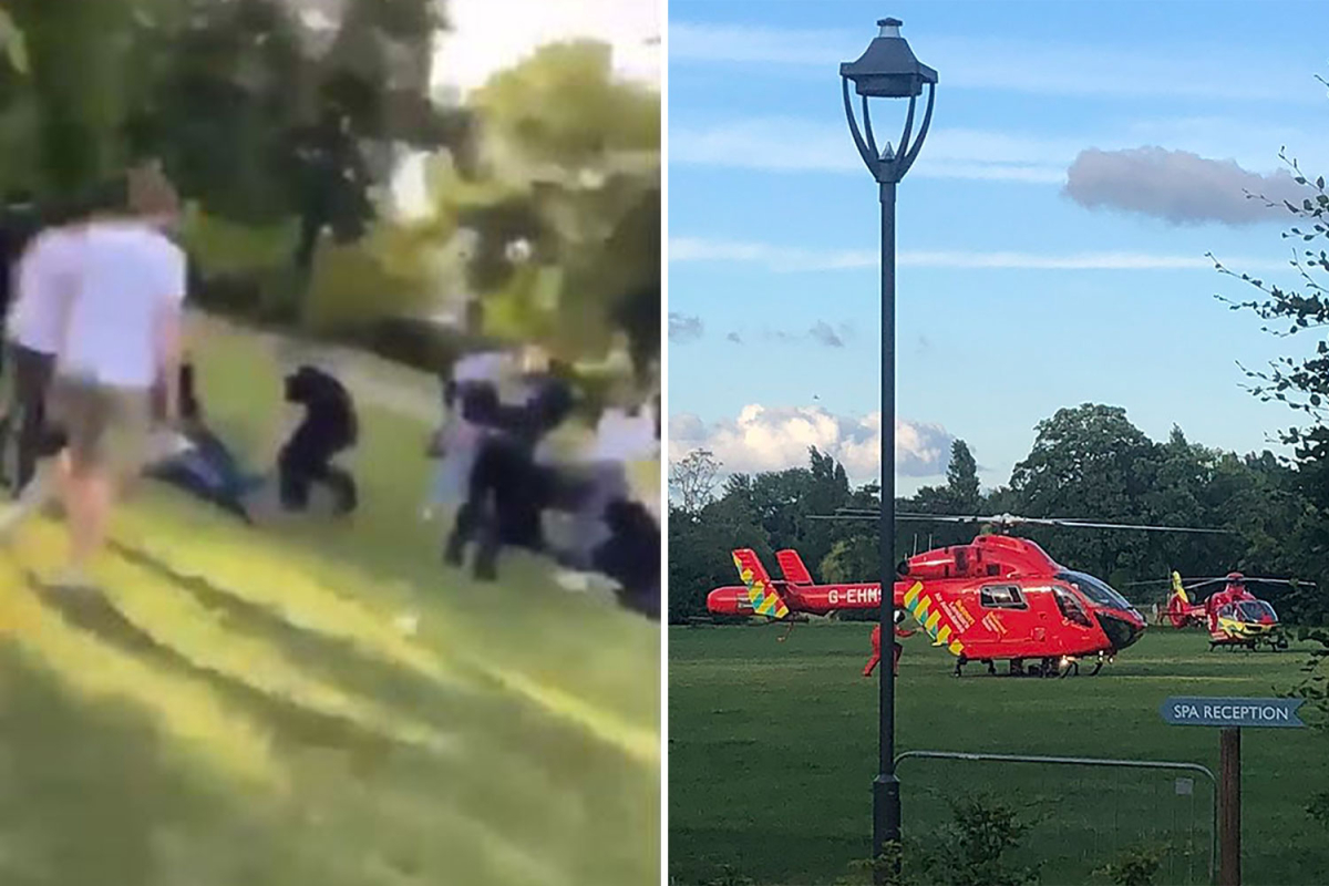Reading stabbings – How knife maniac turned park drinks with pals into terrifying bloodbath
