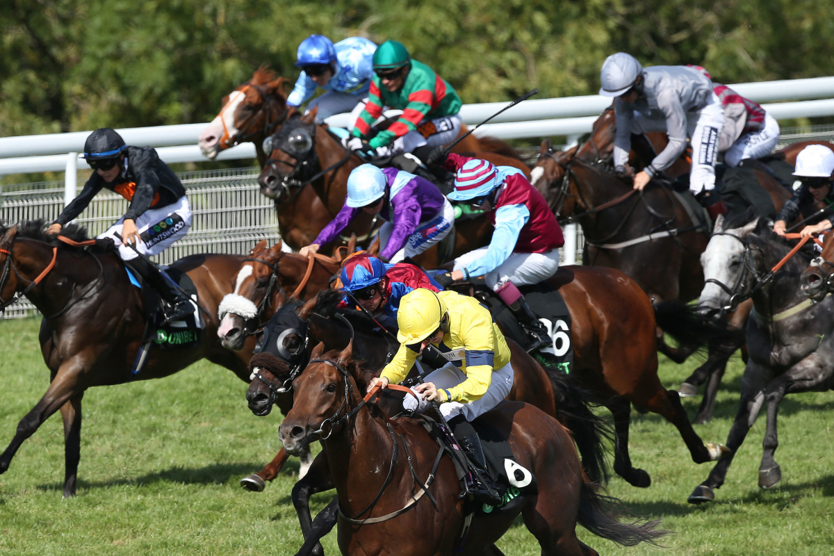 3.35 Glorious Goodwood runners and prices: Racecard, results and tips for the Unibet Stewards' Cup live on ITV