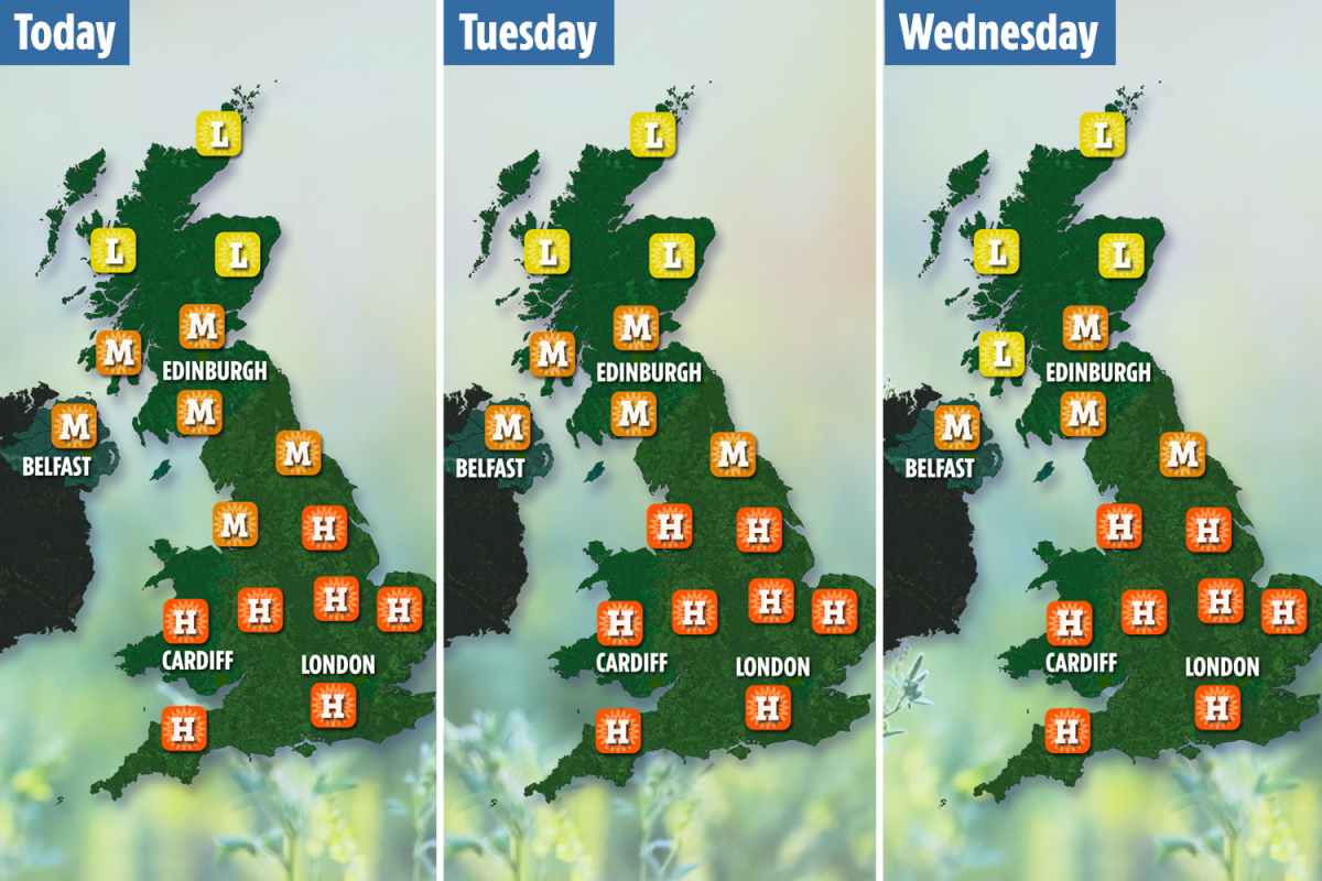 Hay fever sufferers face miserable week as wet and sunny weather triggers 'pollen explosion'
