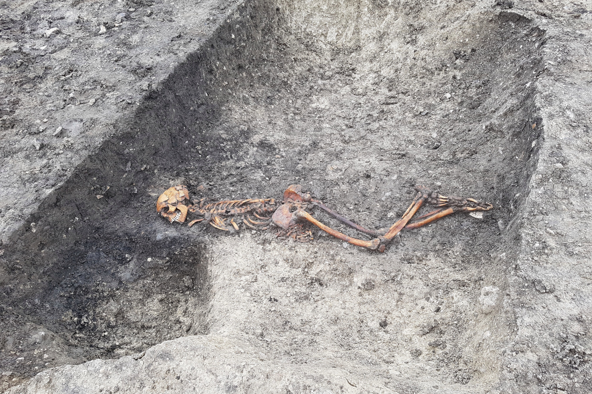 Iron Age 'murder victim' buried face down with hands tied in a ditch found during HS2 works