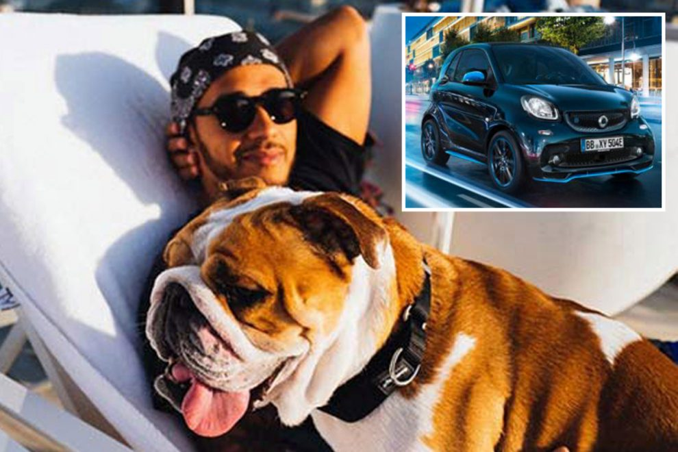 Lewis Hamilton picks his dog as ideal passenger, reveals love of Smart cars and his hopes for a diverse future in F1