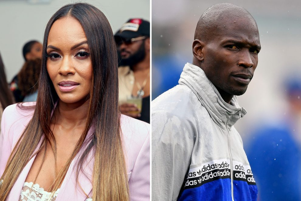 What did Basketball Wives star Evelyn Lozada say about 'domestic abuse' from Chad Johnson?