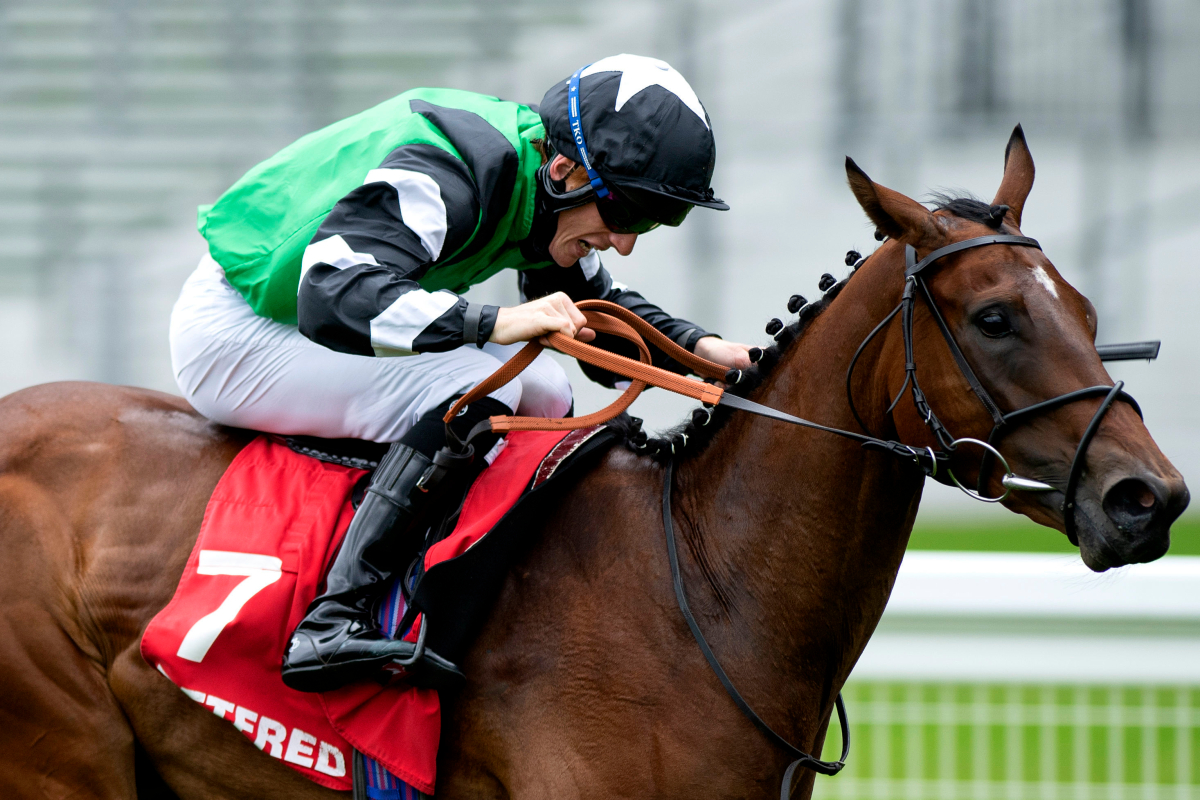 Exciting two-year-old Santosha heading to York for Lowther – and she could be joined by Caroline Dale