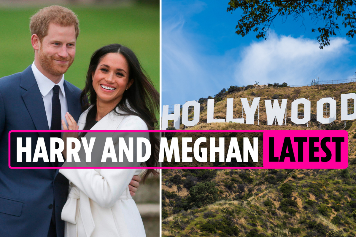 Meghan and Harry latest news: Fans hope to boost Finding Freedom up Amazon charts as author says friends wanted to talk