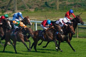 Today's horse racing naps and newspaper tips: Sun Racing's Each-Way Thief