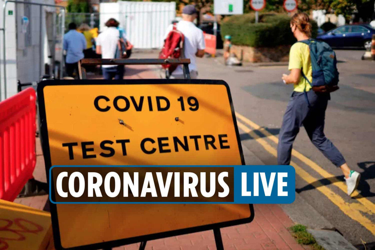 Coronavirus UK news – Test and trace app CHAOS as number of 24-hour Covid test results plunge – LATEST UPDATE