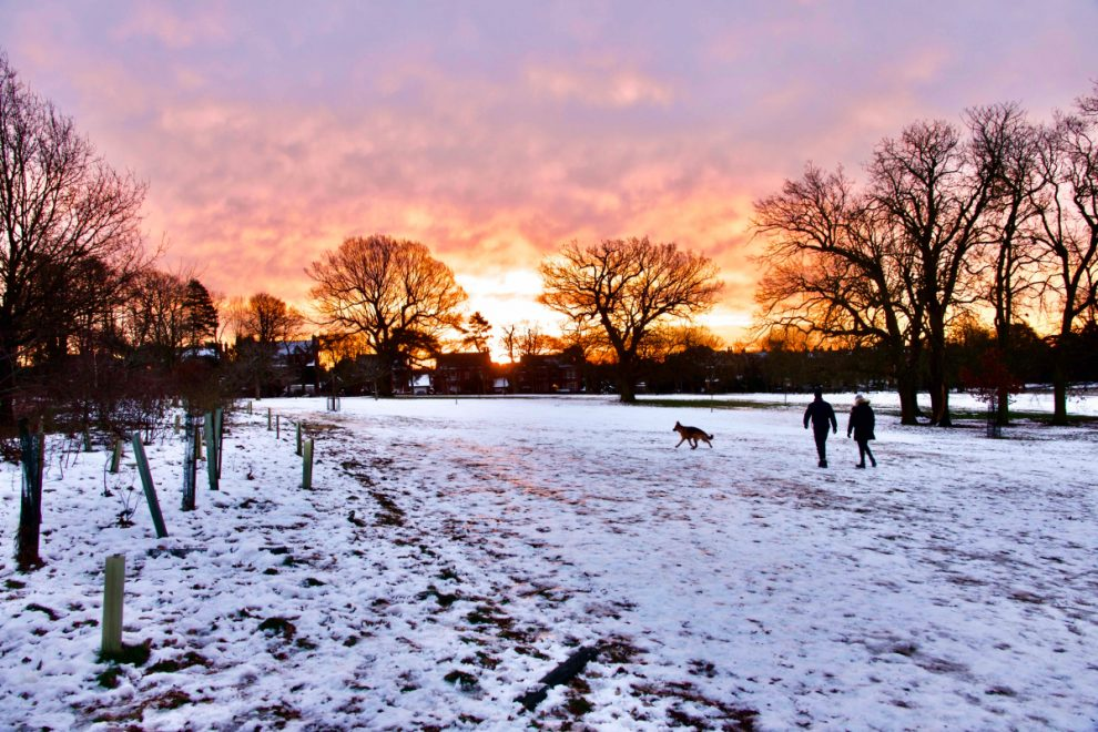 Weather forecast UK – Snow and ice coming THIS WEEK as Met Office warns of 'Arctic dome'