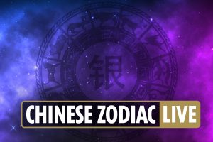 Chinese zodiac signs latest news: Today's horoscope compatibility for Ox, Horse, Pig, Snake and more