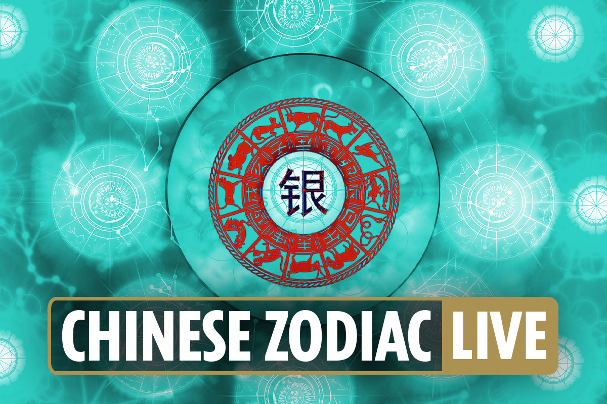 Chinese zodiac signs today: Horoscope compatibility for Dragon, Tiger, Monkey, Rat, Ox and more