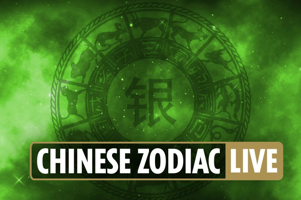 Chinese zodiac signs today: Horoscope compatibility for Dragon, Tiger, Monkey, Rat and more