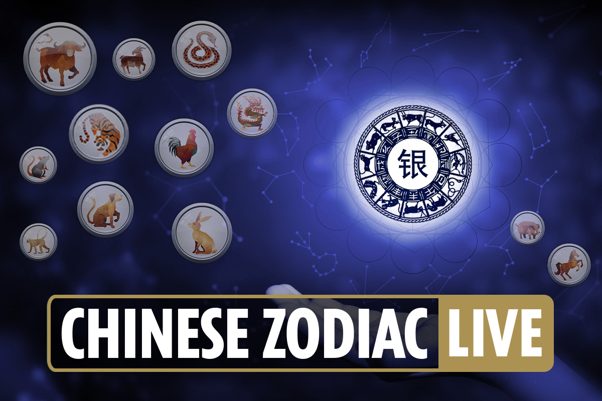 Daily Chinese zodiac: Horoscope signs today for Dragon, Tiger, Monkey, Rat, Ox and more