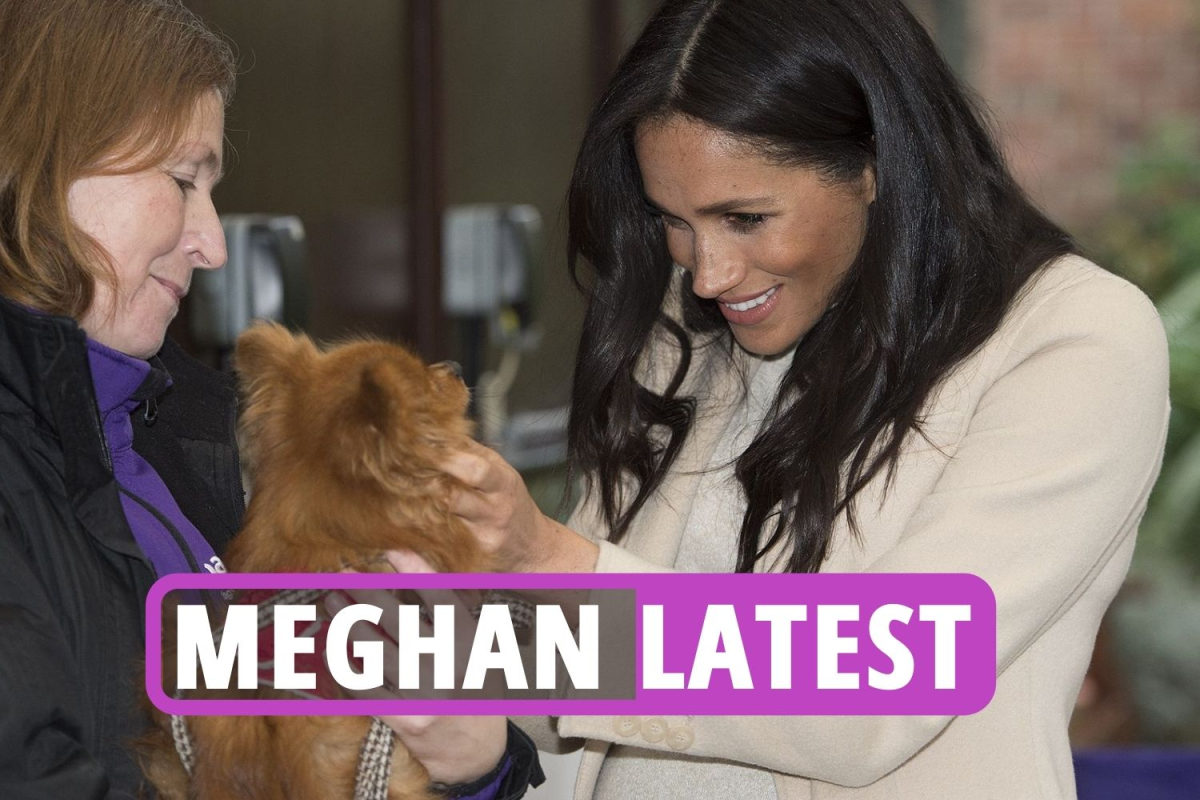 """Meghan Markle latest news – Duke and Duchess of Sussex could be """"ditched"""" from Royal family when Charles is crowned king"""