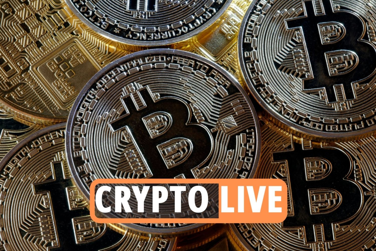 Bitcoin news LIVE – Elon Musk says he 'supports crypto over fiat currency' after backlash as bitcoin divorces skyrocket