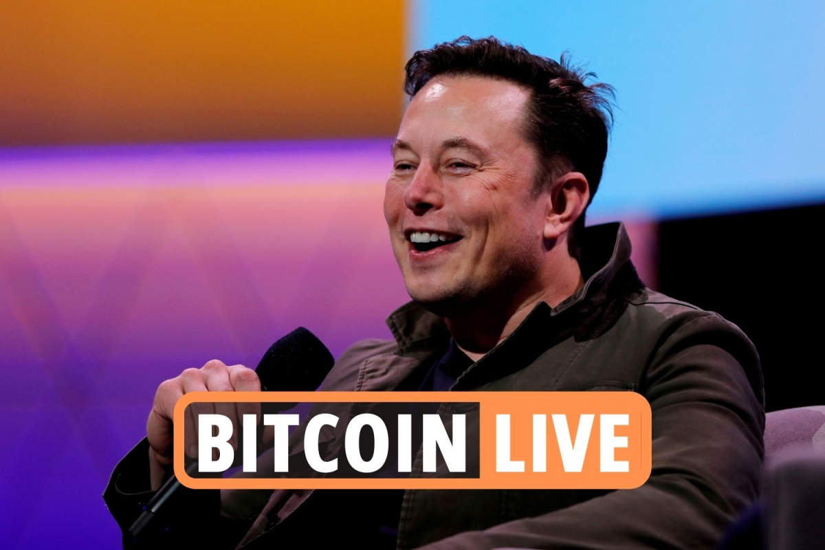 Bitcoin news latest LIVE – Price rises 4% after Elon Musk reveals 'promising' talks on renewable energy & backs dogecoin