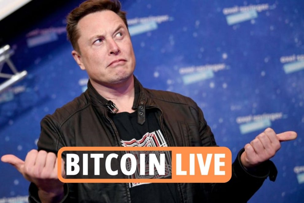 Bitcoin price latest – Crypto stocks bounce back after $6bn drop following Elon Musk's Tesla virtual currency ban
