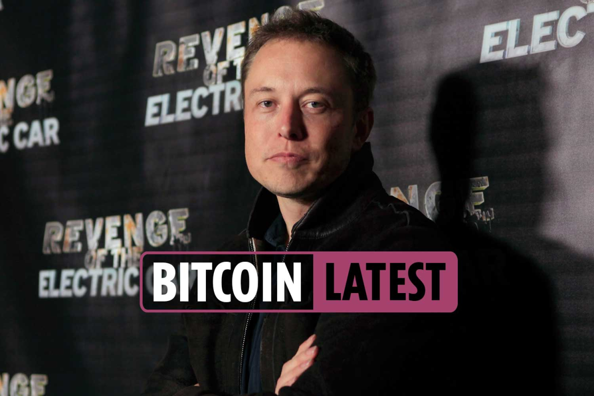 Bitcoin price news latest – StopElon coin launched to prevent Elon Musk from influencing the cryptocurrency market