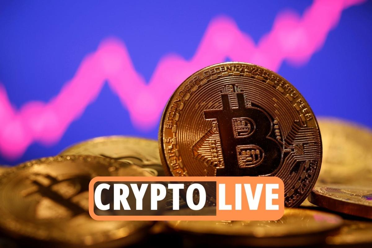 Crypto price crash LIVE – Bitcoin bounces back above $40,000 after Elon Musk says Tesla wont sell cryptocurrencies