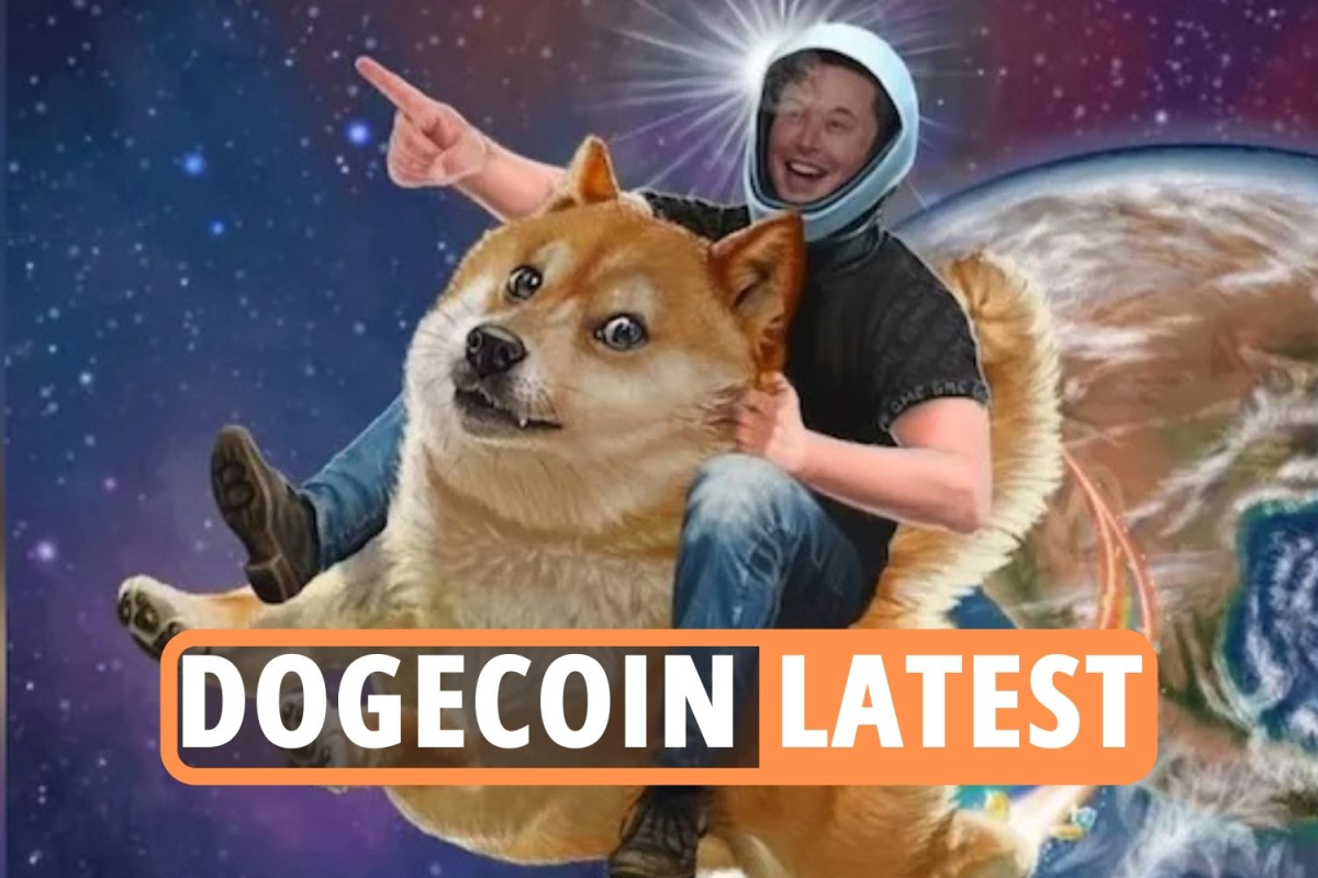 Dogecoin latest – Elon Musk sends cryptocurrency's price SOARING ahead of SNL; plus Bitcoin and Ethereum updates LIVE