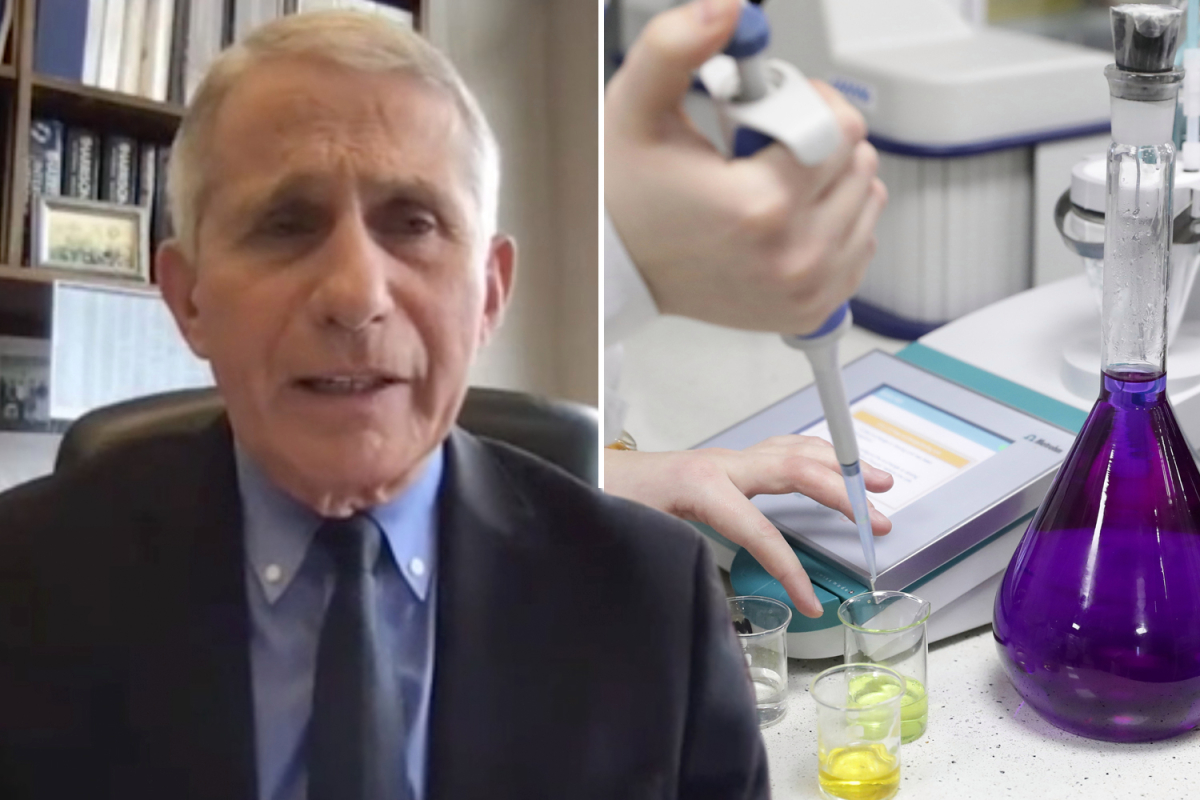 Fauci admits US sent $600k to Wuhan lab at center of Covid 'leak' theory – but defends 'modest' virus research funding