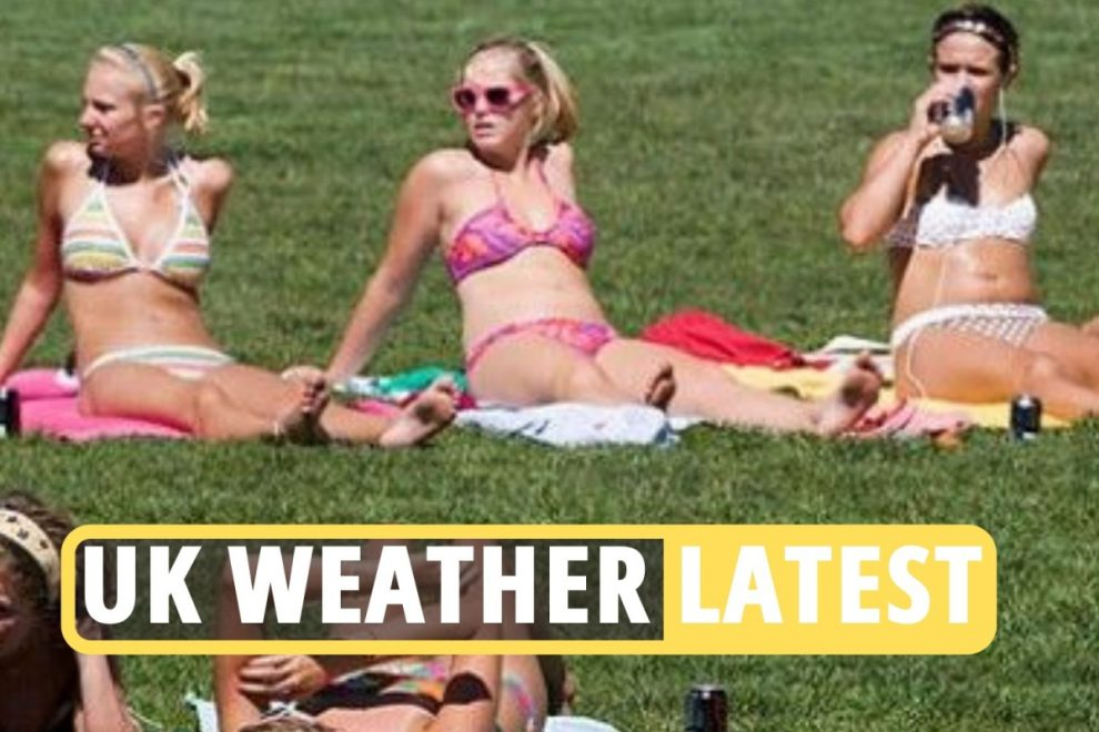 UK weather forecast – 25C summer temperature surge will bring hay fever 'pollen bomb' within weeks, experts warn