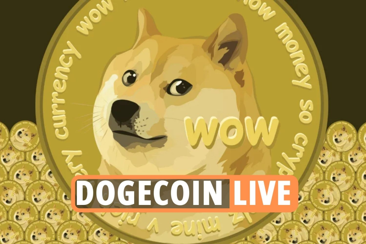 Bitcoin price – LIVE: Dogecoin value surge turns cryptocurrency market UPSIDE DOWN following Coinbase Pro listing