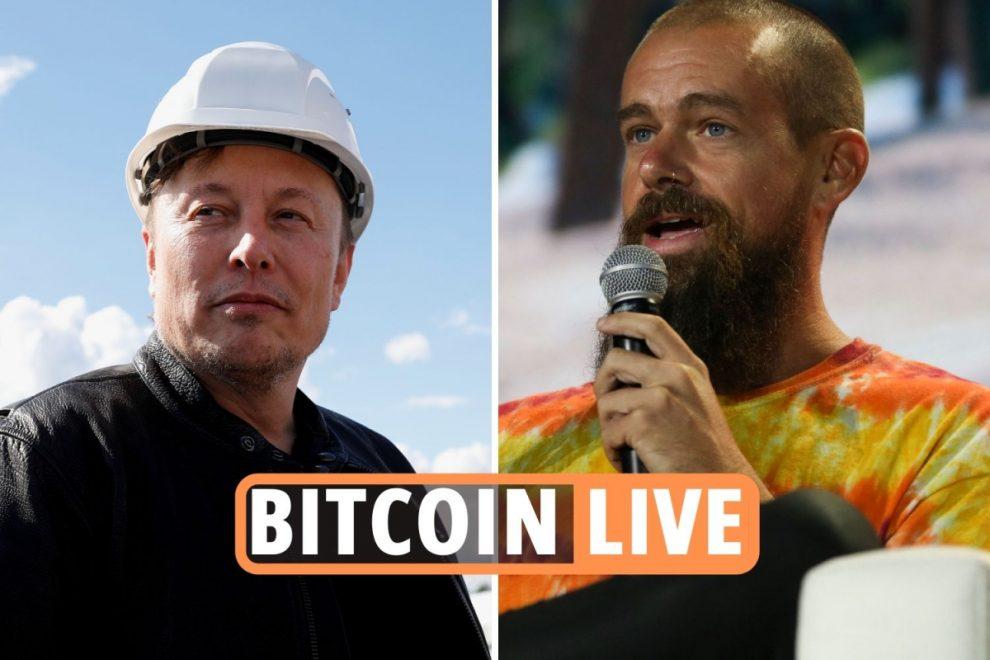 Bitcoin price news LIVE: Ethereum, BTC rise as Twitter CEO backs crypto amid Elon Musk 'break up' meme – plus Dogecoin