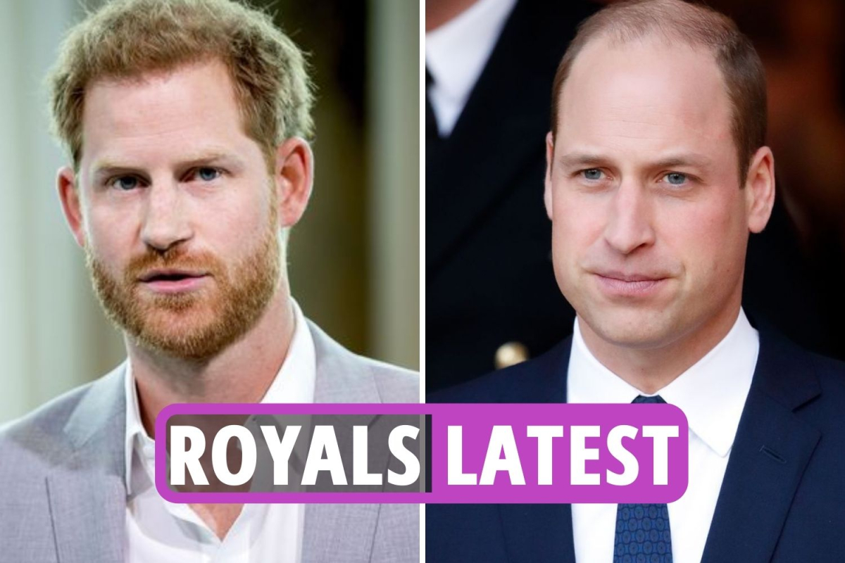 Royal Family news – Prince Harry must DIVORCE Meghan Markle if he ever wants to heal rift with William, expert claims