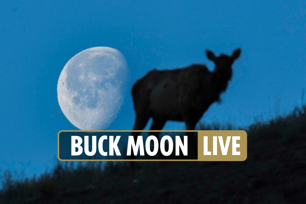 Buck Moon 2021 LIVE – Full moon with 'spiritual meaning' also called Thunder Moon to be seen THIS WEEK on Friday July 23