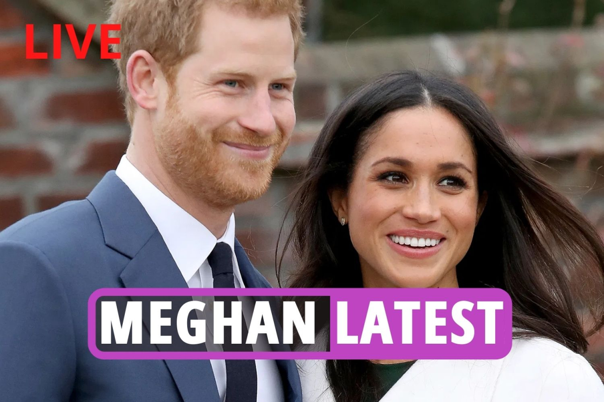 Meghan Markle – 'Ambitious' Duchess secretly plotted to marry Prince Harry to further her career, expert suggests