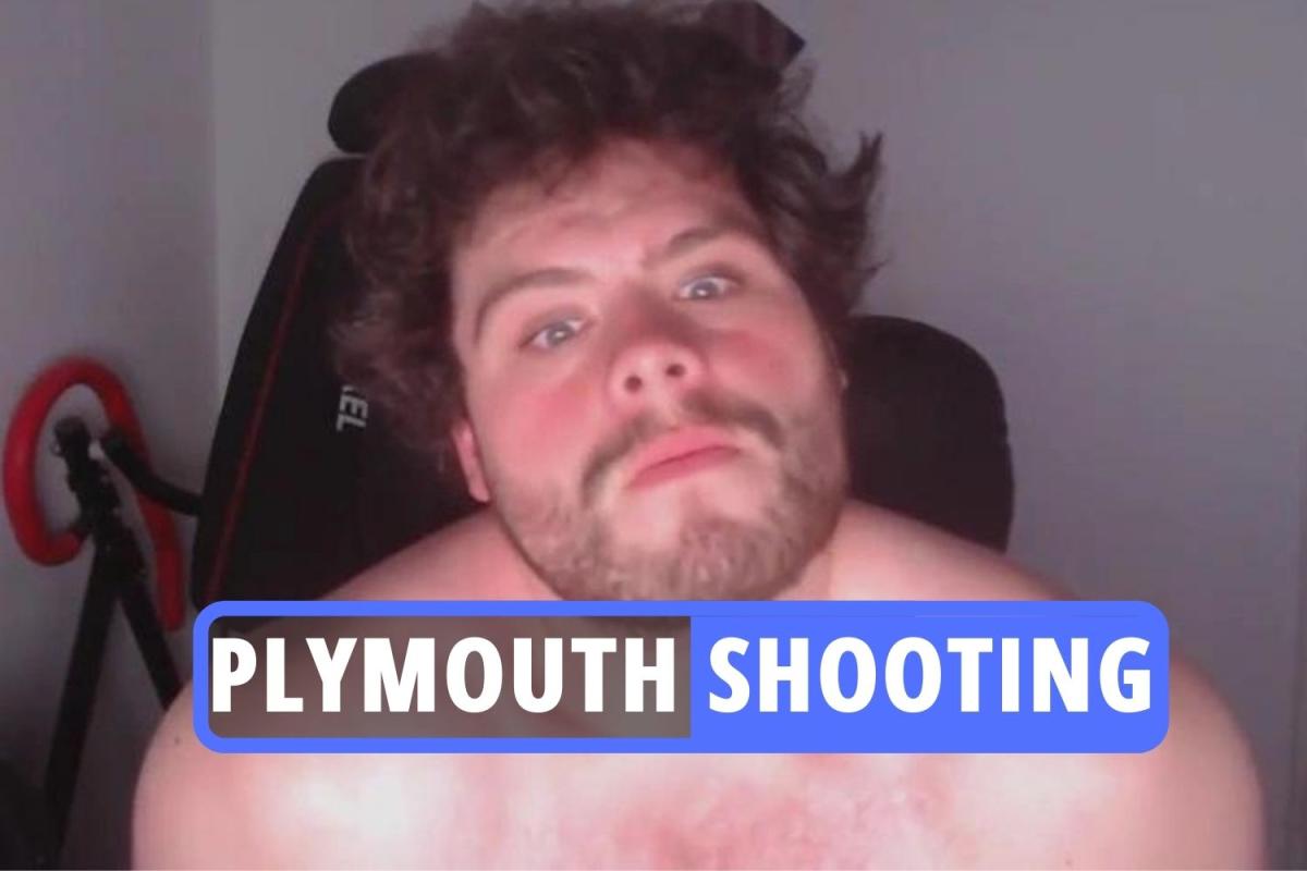 Jake Davison – Plymouth shooter's blocked YouTube videos showed 'incel' ramblings & police slammed for returning gun