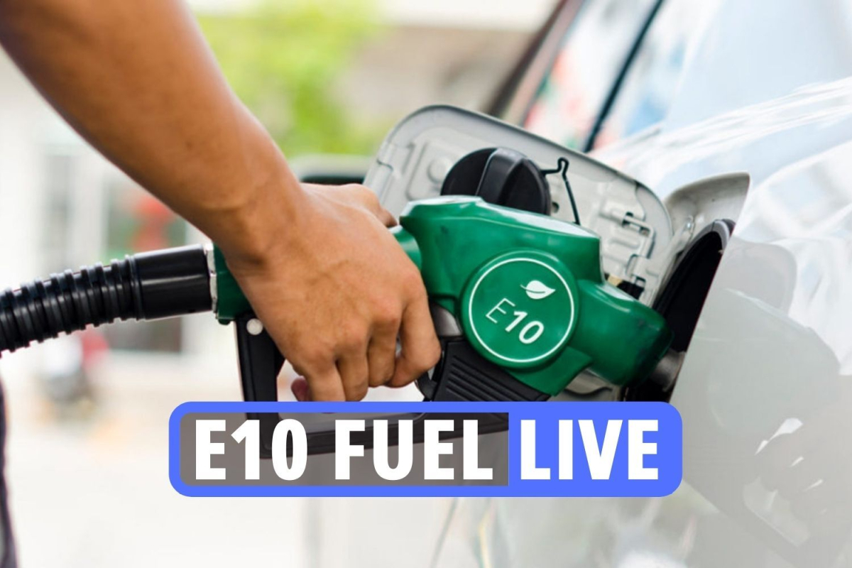 E10 car checker latest – How to check if your car is compatible with new petrol ahead of it's launch today