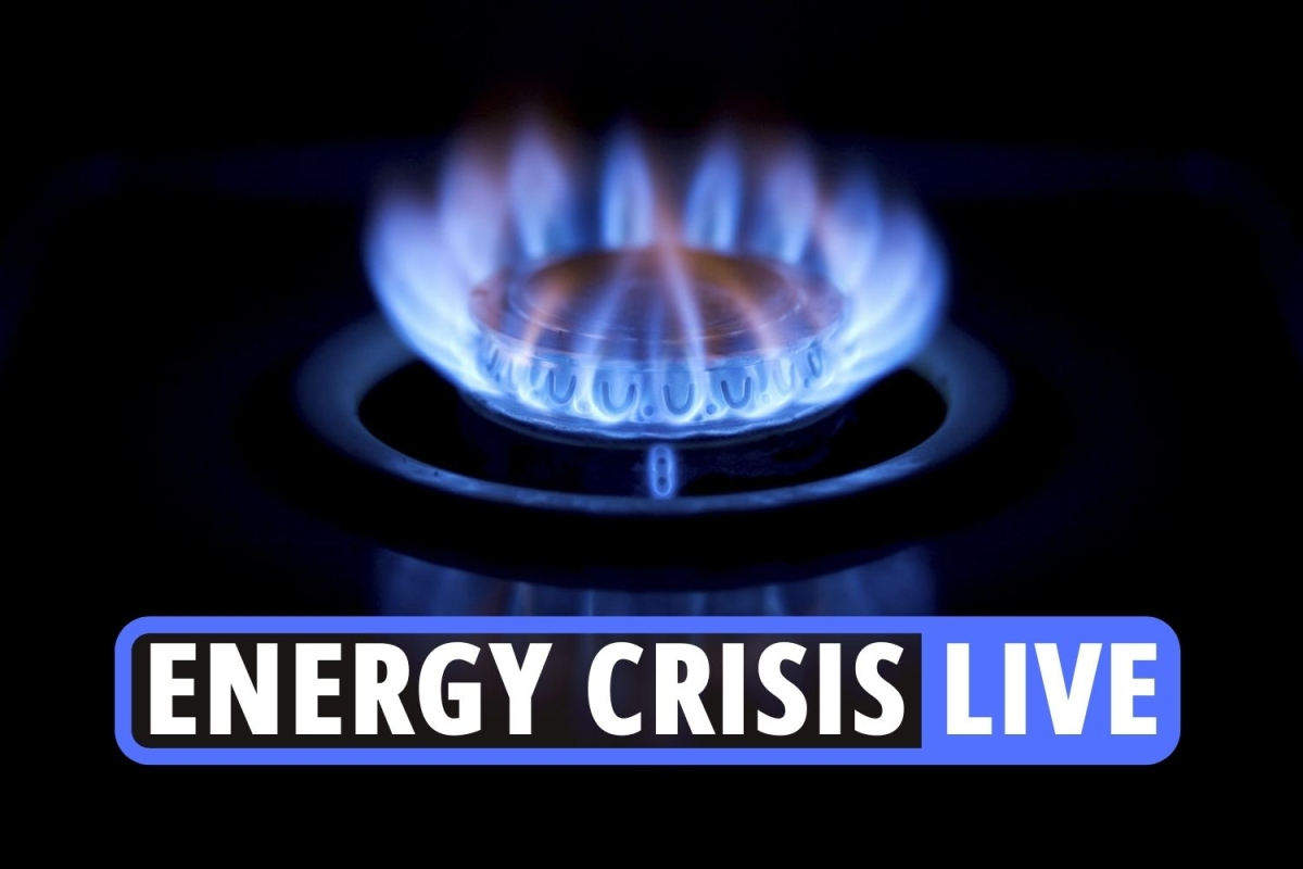Energy companies bust – live updates: Avro and Green Energy go bust as Octopus and Bulb tell customers not to panic