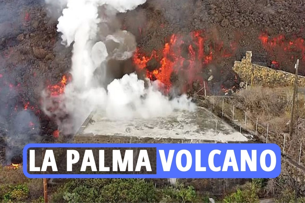 La Palma volcano – Video shows Canary Island swimming pools BOIL as wall of lava flows down street amid toxic gas fears